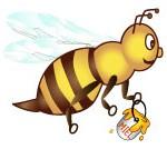 abeille-piedDepage